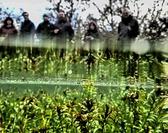 Mare s'Attaque dans les Causses du Quercy - Chantier Participatif