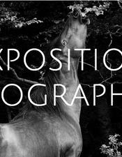 expo-photo-mas-de-peyrelongue