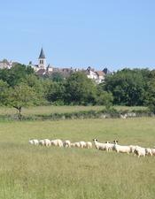 Paroles d'éleveurs / Restitution d'enquête ethnologique