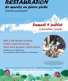 Chantier Participatif : Restauration de Murets en Pierre Sèche