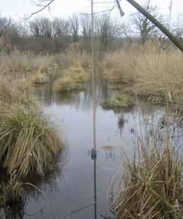 Zones Humides : Réservoirs de Biodiversité