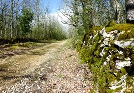 Chemin passant par le pech del Piatzé © Lot Tourisme - C. Sanchez