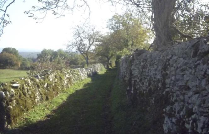 Un paysage façonné par la brebis 4 - Espédaillac