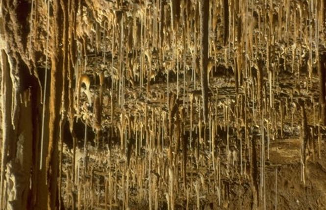 Grottes de Lacave 3 - Lacave