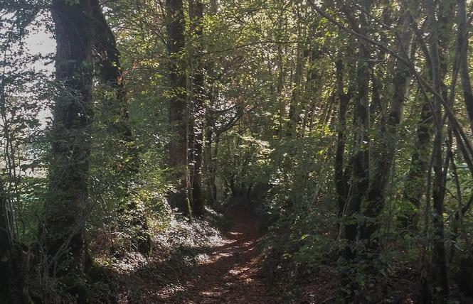 Le Chemin aux Deux Visages 12 - Thémines