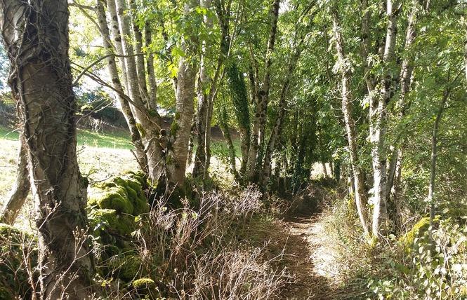 Le Chemin aux Deux Visages 21 - Thémines
