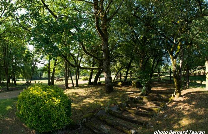 Parc Animalier de Gramat 6 - Gramat