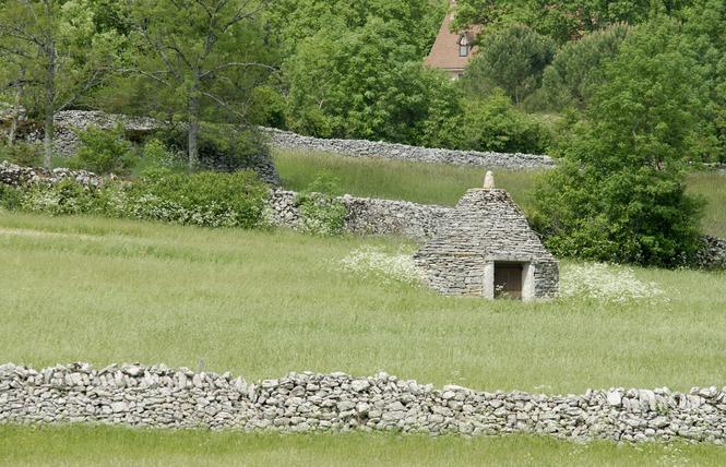 Un paysage façonné par la brebis 1 - Espédaillac