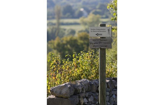 Réserve Naturelle Régionale du Marais de Bonnefont 8 - Mayrinhac-Lentour