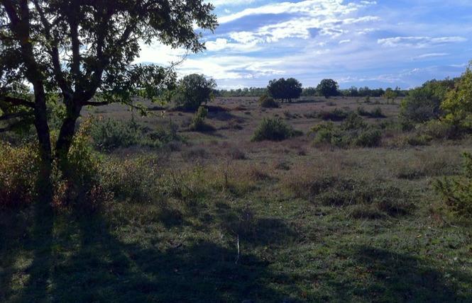 La route des paysages trufficoles 2 - Lalbenque
