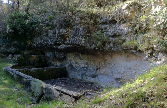 Le sentier des truffes 6 - Lalbenque