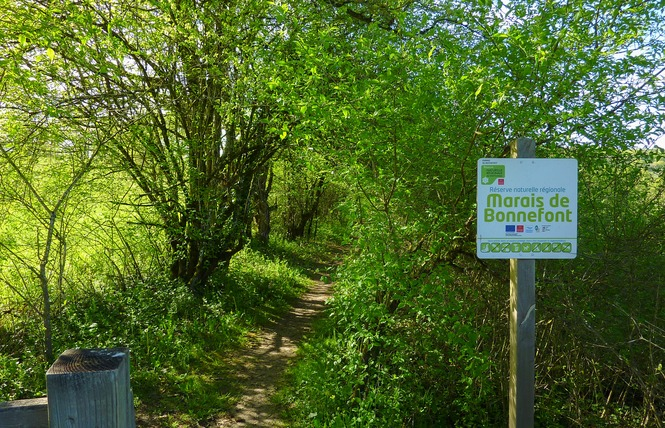 Le Marais de Bonnefont, Réserve Naturelle Régionale 15 - Mayrinhac-Lentour