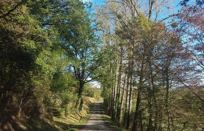 Le Chemin aux Deux Visages 9 - Thémines