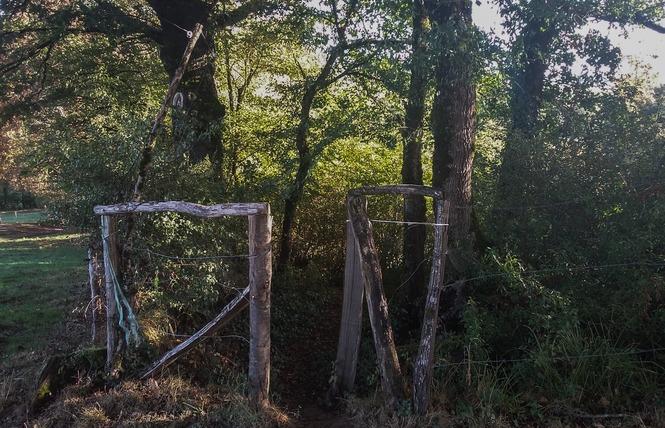 Le Chemin aux Deux Visages 6 - Thémines