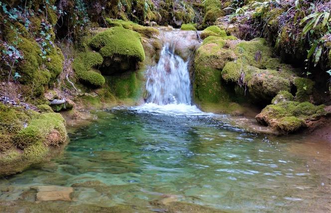 Le Chemin du ruisseau qui se perd 1 - Sabadel-Lauzès