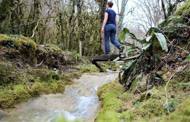 Le Chemin du ruisseau qui se perd 2 - Sabadel-Lauzès
