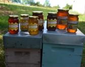 Covid-19: Les producteurs agricoles de la marque Valeurs Parc s'organisent