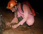 De nouvelles espèces souterraines découvertes !