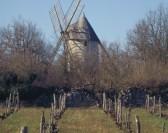 Les moulins du Quercy racontent…