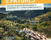 Une revue sur la valorisation des espaces embroussaillées