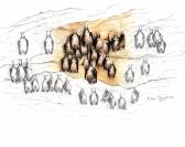 Installation d'un système d'observation d'une colonie de chauves-souris à Cénevières