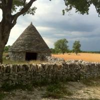 Caselle de Nouel à Lalbenque © P.Andlauer PNRCQ