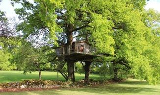 Au coin des Granges - Cabane dans les arbres - Bio