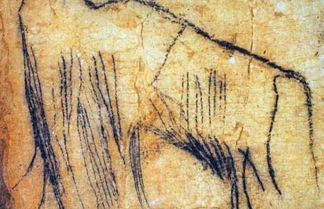 Grotte du Pech-Merle 6 - Cabrerets