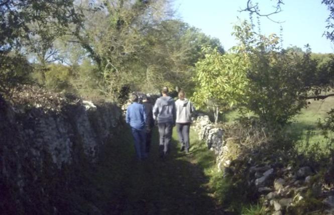 Le Sentier de la Brebis 8 - Espédaillac