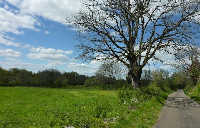Sur les Traces de Galiot - Cyclo 4 - Assier
