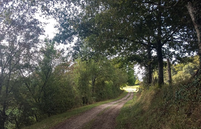 Le Chemin aux Deux Visages 15 - Thémines