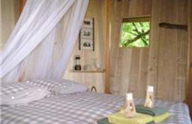 La Cabane dans les Chênes 4 - Bio