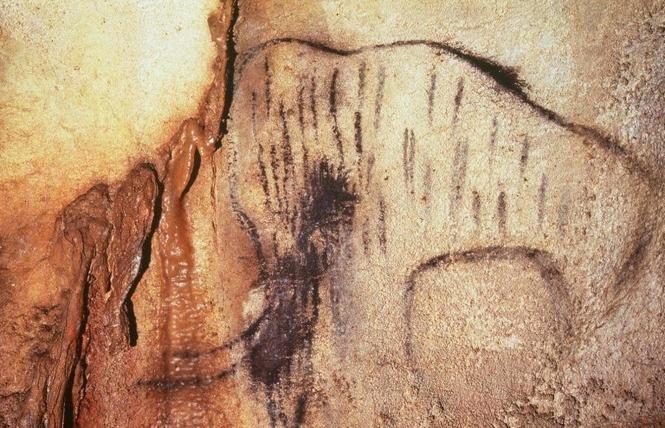 Grotte du Pech-Merle 3 - Cabrerets