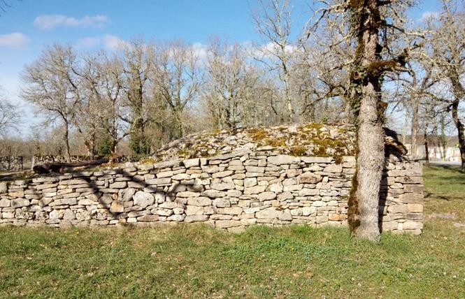 Les Dolmens de Limogne-en-Quercy 8 - Limogne-en-Quercy