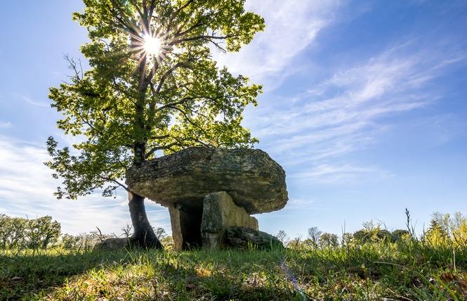 Les Dolmens de Limogne-en-Quercy 2 - Limogne-en-Quercy