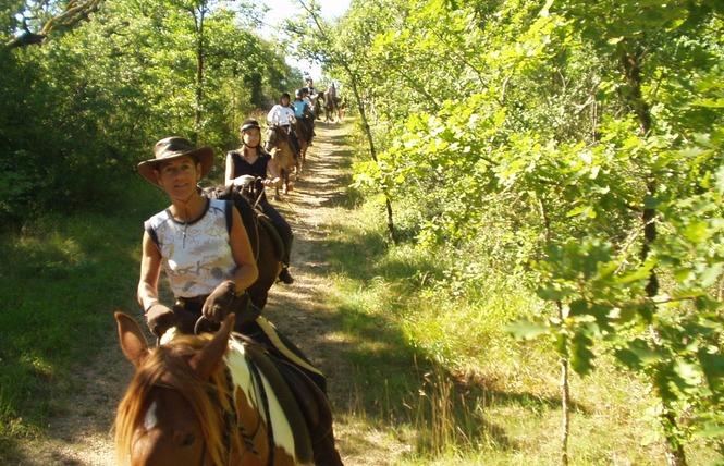 Ferme Equestre Chez Maiwenn 4 - Calvignac