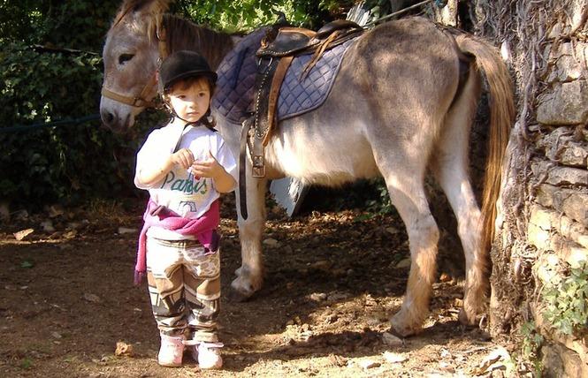 Ferme Equestre Chez Maiwenn 5 - Calvignac