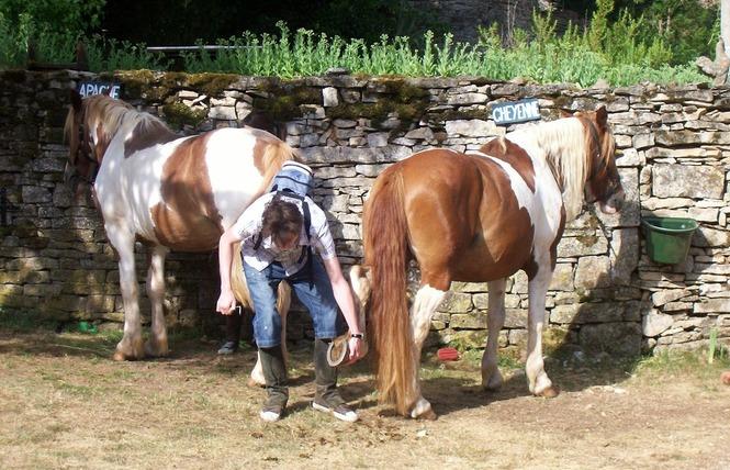 Ferme Equestre Chez Maiwenn 7 - Calvignac