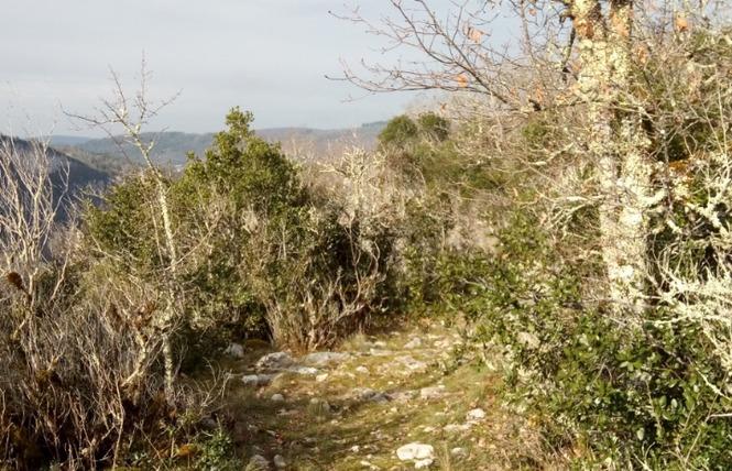 Le sentier karstique de l'igue de Crégols 13 - Crégols