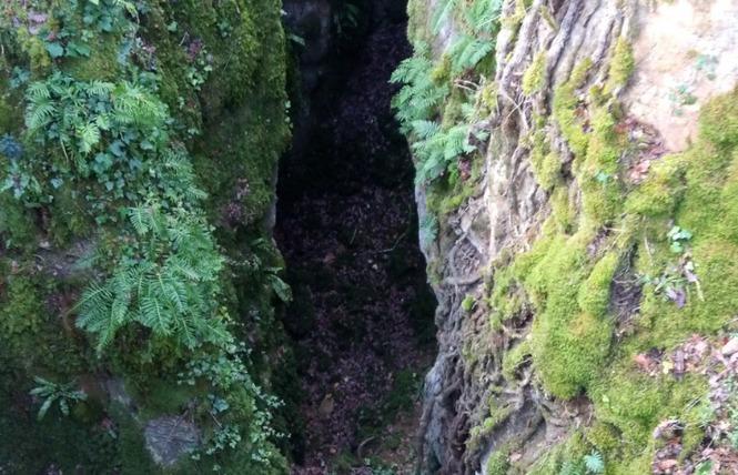 Le sentier karstique de l'igue de Crégols 2 - Crégols