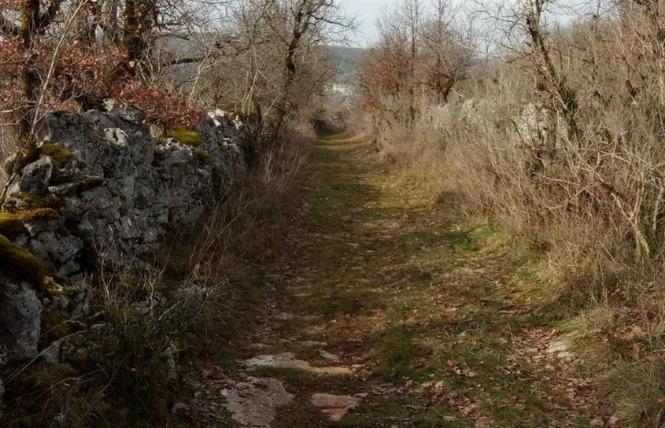 Le sentier karstique de l'igue de Crégols 14 - Crégols