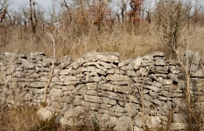 Le sentier karstique de l'igue de Crégols 10 - Crégols