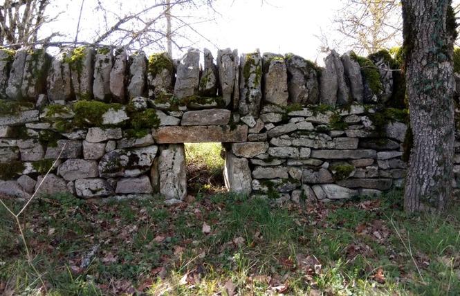 Les Dolmens de Limogne-en-Quercy 10 - Limogne-en-Quercy