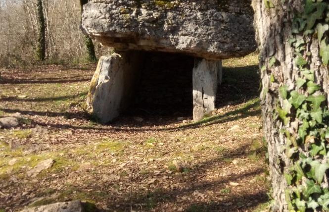 Les Dolmens de Limogne-en-Quercy 11 - Limogne-en-Quercy