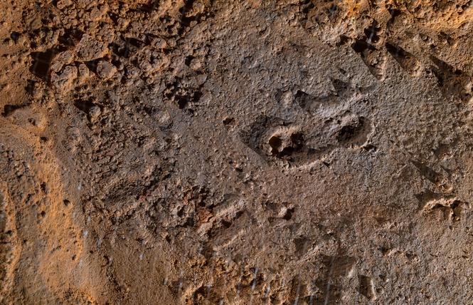Grotte du Pech-Merle 5 - Cabrerets
